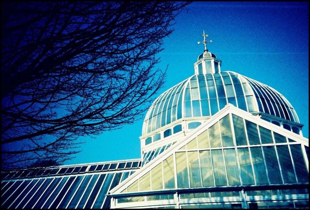 Glasgow Botanical Gardens Glasshouse Queen's Park