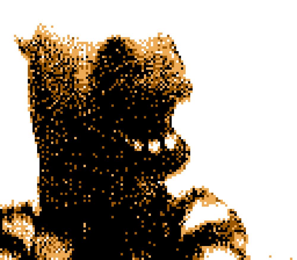 Horse Face Game Boy Camera
