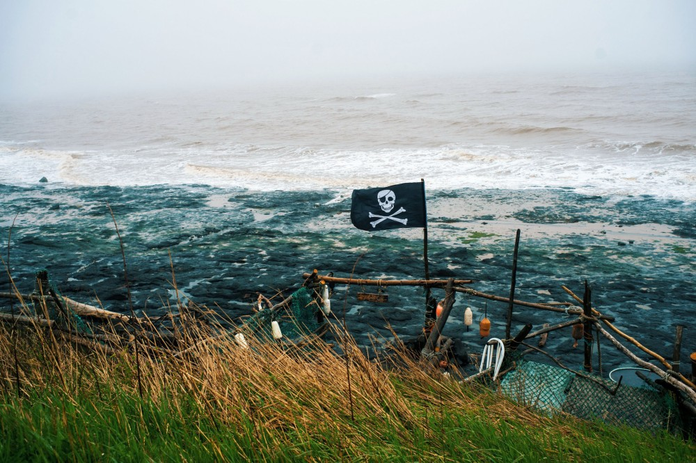 Nova Scotia Pirate Flag