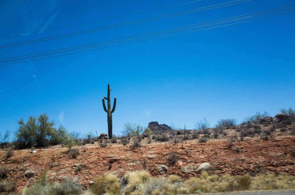 Cactus Road Trip USA