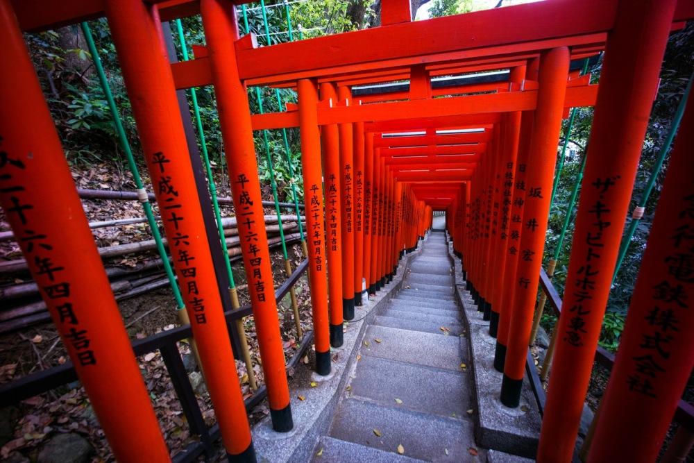 Tokyo Shrine red gates