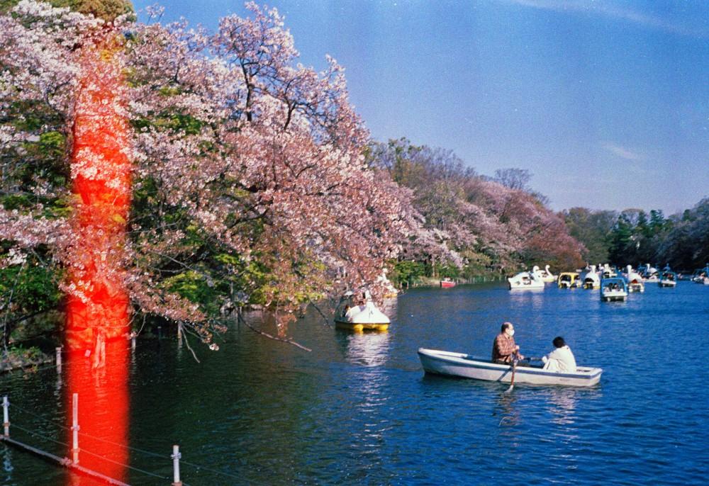 Vivitar Japan 35mm