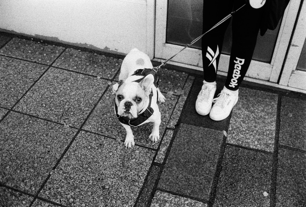 35mm black and white